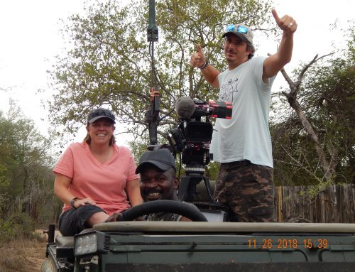 safariLIVE Experience: Teresa Eubanks