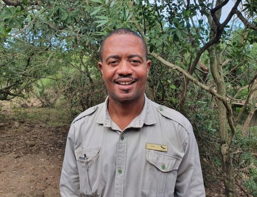 Dumi Qwabe to join the team of LIVE guides for Phinda