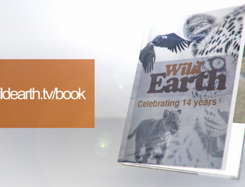 The WildEarth coffee table book is now guaranteed to be printed!